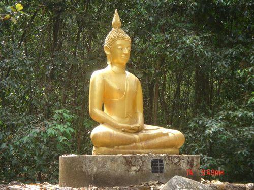 Buddha achieving enlightenment