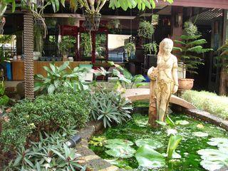Cool garden setting